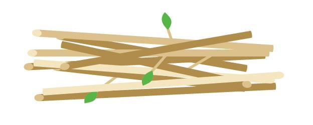 【インコ飼育】とまり木の最適な本数と種類−太さだけ気にしてはダメ