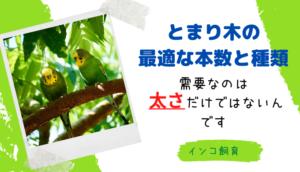 とまり木の最適な本数と種類−太さだけ気にしてはダメ−