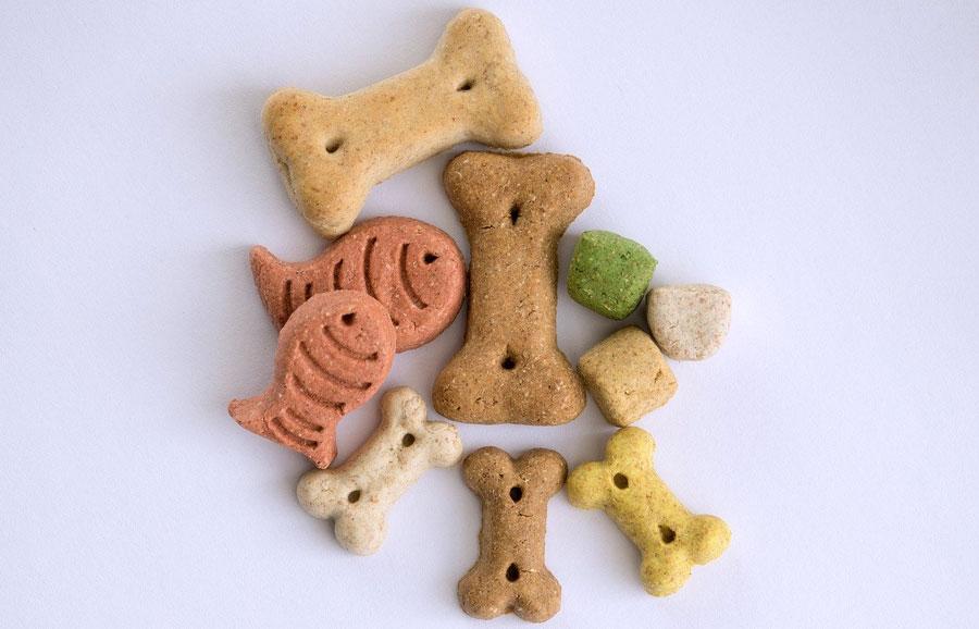 犬の口臭予防おすすめグッズ!人気ドッグフードやサプリメントなど26選!