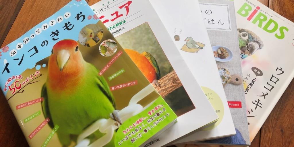 【無料でできるよ】インコやペットについて勉強する方法