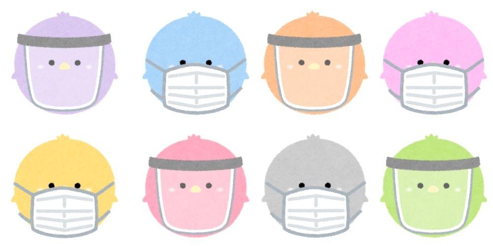 インコの風邪の症状とは?予防方法、風邪以外の病気についてご紹介します