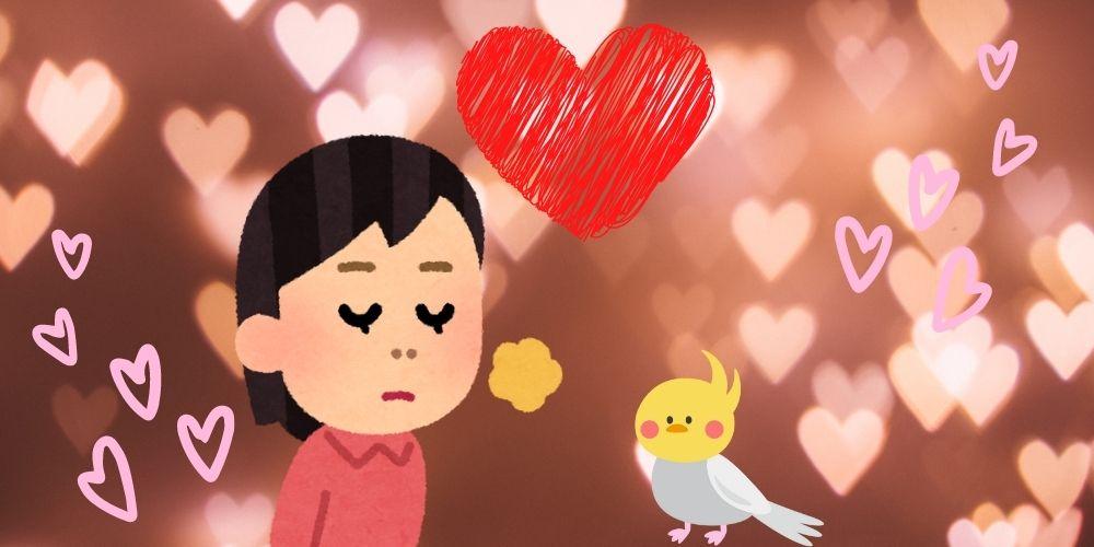 【インコ臭への愛】インコは臭くない!臭う原因と対策をご紹介