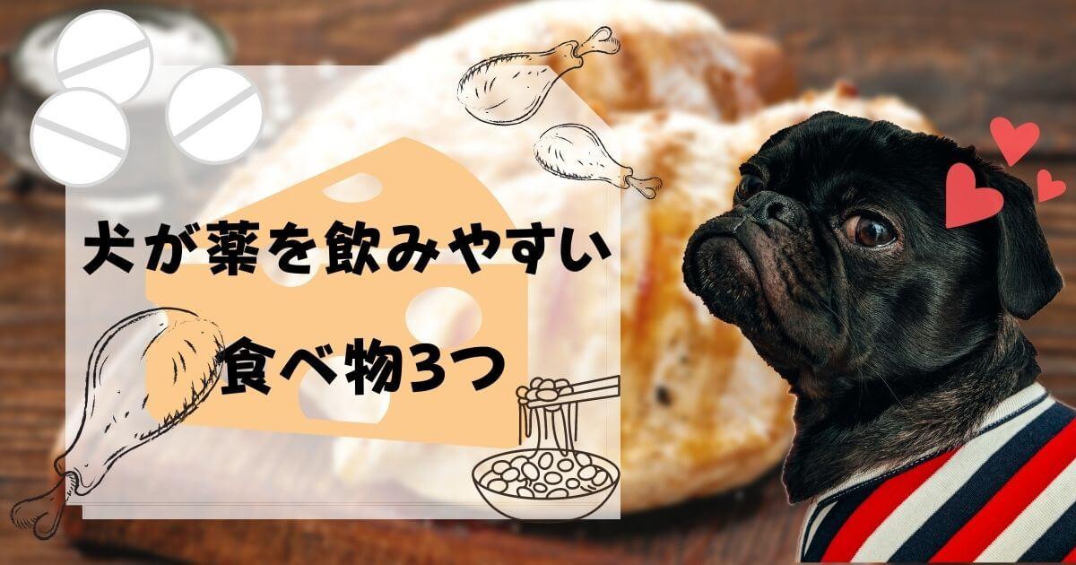 【薬の形状別】犬の薬の飲ませ方のコツ!飲みやすい食べ物も3つ紹介